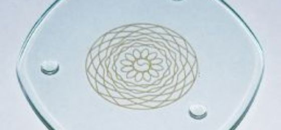 Homeopathy memory of water Aromatherapy